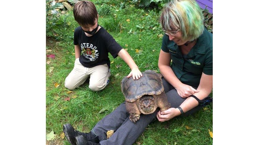 Natasha renames the turtle Miękki, the Polish word for soft
